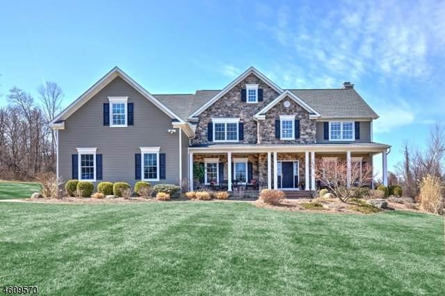 44 Still Hollow Rd, Tewksbury Twp., NJ 08833 (MLS #3622666) :: Vendrell Home Selling Team