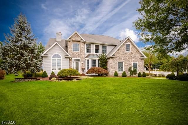 9 N Shore Ct, Montgomery Twp., NJ 08558 (MLS #3622864) :: REMAX Platinum