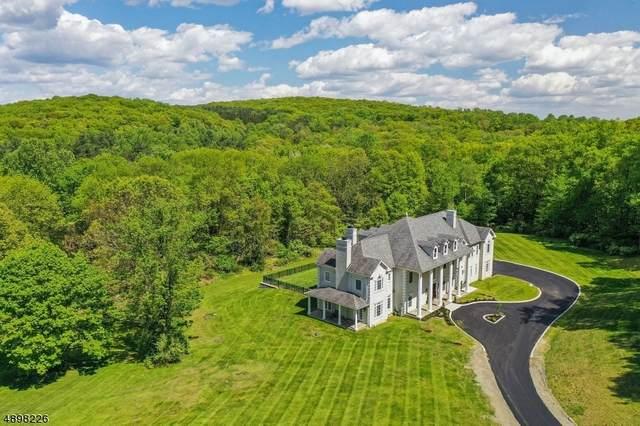 7 Wortman Way, Chester Twp., NJ 07930 (MLS #3623216) :: The Dekanski Home Selling Team
