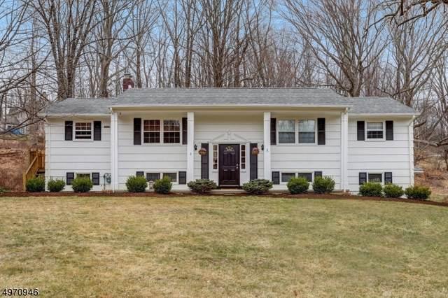2 Benjamin Rd, Chester Twp., NJ 07930 (MLS #3623420) :: The Douglas Tucker Real Estate Team