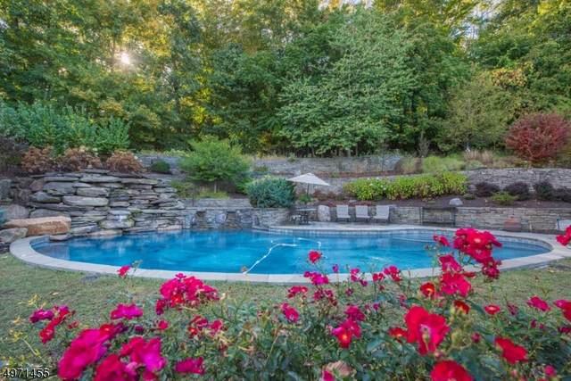 17 Tara Ln, Montville Twp., NJ 07045 (MLS #3623877) :: SR Real Estate Group