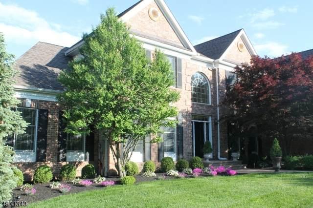 27 Benjamin Pl, Branchburg Twp., NJ 08853 (#3623886) :: Proper Estates