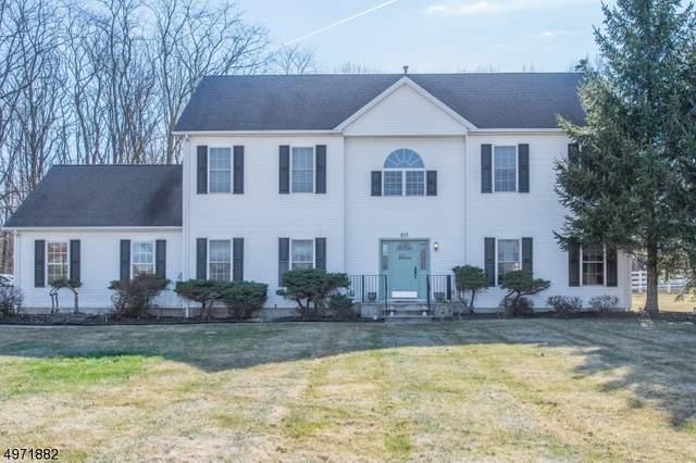 213 Flanders-Netcong Rd, Mount Olive Twp., NJ 07836 (MLS #3624256) :: The Douglas Tucker Real Estate Team