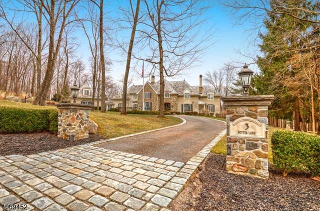 3 Potter Ln, Tewksbury Twp., NJ 08833 (MLS #3624419) :: Vendrell Home Selling Team