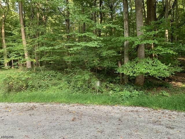 645 W Mountain Rd, Sparta Twp., NJ 07871 (MLS #3624456) :: William Raveis Baer & McIntosh