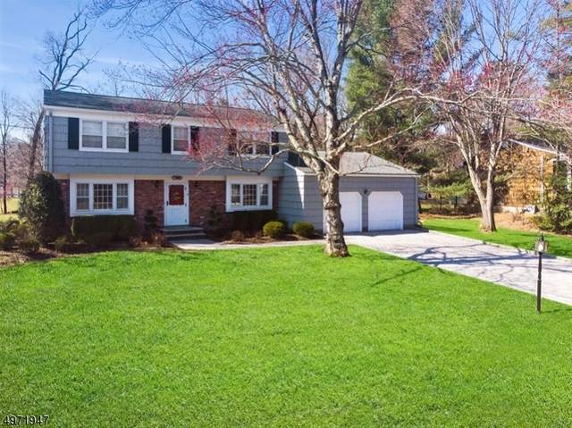 9 Brandywine Pl, Oakland Boro, NJ 07436 (MLS #3624498) :: William Raveis Baer & McIntosh