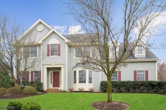 5 Boyne Highlands Ct, Montgomery Twp., NJ 08558 (MLS #3625149) :: REMAX Platinum