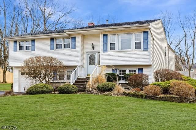 4 Mt View Rd, Roxbury Twp., NJ 07876 (MLS #3625229) :: The Douglas Tucker Real Estate Team