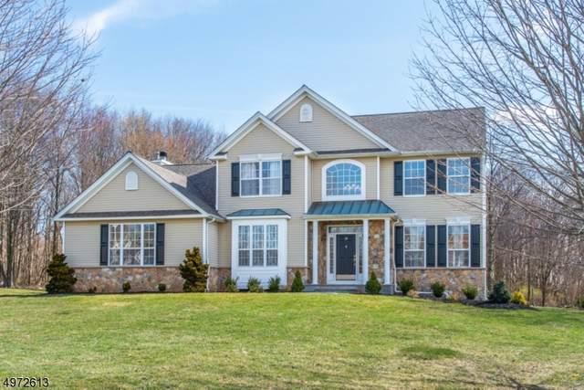 19 Saunders Ln, Mount Olive Twp., NJ 07840 (MLS #3625245) :: The Douglas Tucker Real Estate Team