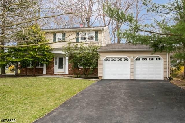 25 Jay St, Roxbury Twp., NJ 07876 (MLS #3625694) :: The Douglas Tucker Real Estate Team