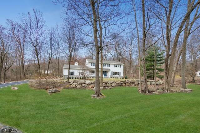 596 High Mountain Rd, Franklin Lakes Boro, NJ 07417 (MLS #3625794) :: REMAX Platinum