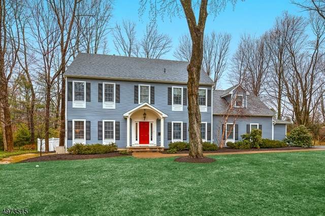9 Emery Ave, Mendham Boro, NJ 07945 (MLS #3625957) :: The Douglas Tucker Real Estate Team