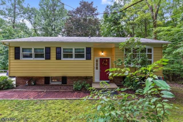 942 Route 517, Independence Twp., NJ 07840 (#3626014) :: Jason Freeby Group at Keller Williams Real Estate