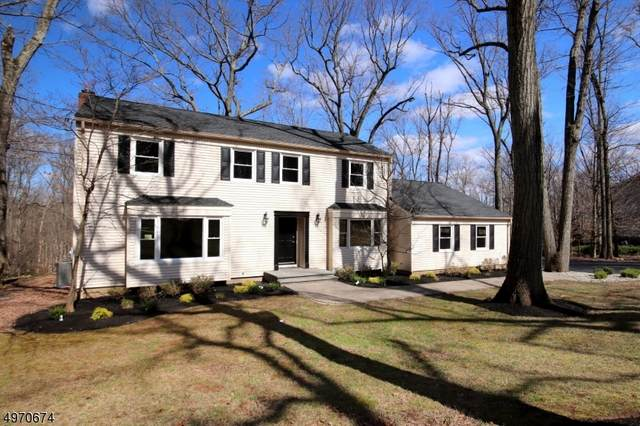860 Sherwood Road, Bridgewater Twp., NJ 08807 (#3626145) :: Jason Freeby Group at Keller Williams Real Estate