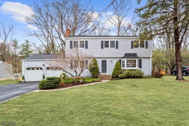 24 Florie Farm Rd, Mendham Boro, NJ 07945 (MLS #3626259) :: The Dekanski Home Selling Team