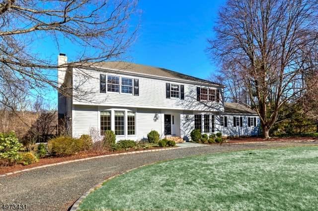 61 Post Kennel Rd, Bernardsville Boro, NJ 07924 (MLS #3626301) :: The Dekanski Home Selling Team