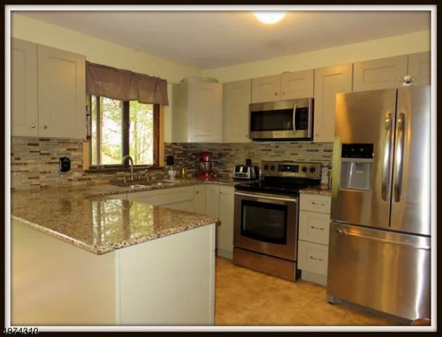 925 Middleville Road, Stillwater Twp., NJ 07860 (#3626461) :: Daunno Realty Services, LLC
