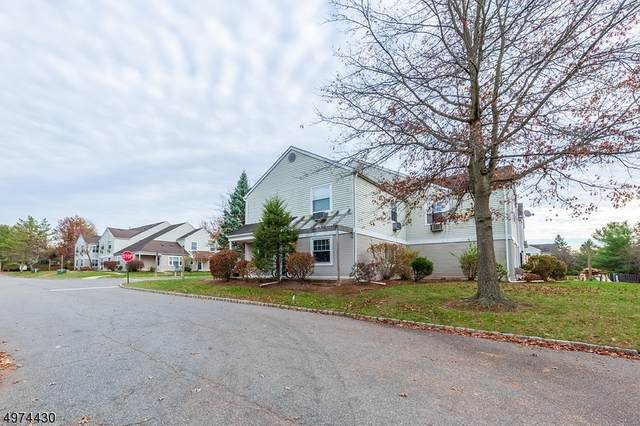 17 Cain Ct, Bridgewater Twp., NJ 08807 (MLS #3626741) :: Pina Nazario
