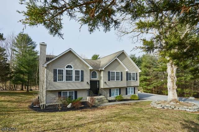 125 Riverview Way, Montague Twp., NJ 07827 (MLS #3626915) :: REMAX Platinum