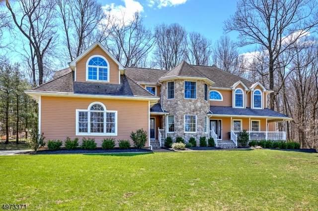 1 Brandywine Ct, Randolph Twp., NJ 07869 (MLS #3627145) :: SR Real Estate Group