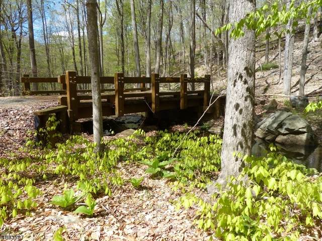 66 Rippling Brook Way, Bernardsville Boro, NJ 07924 (#3627389) :: Nexthome Force Realty Partners