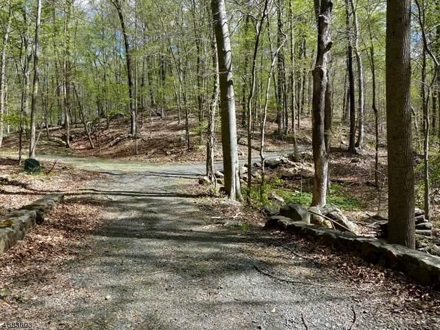 60 Rippling Brook Way, Bernardsville Boro, NJ 07924 (MLS #3627391) :: Mary K. Sheeran Team