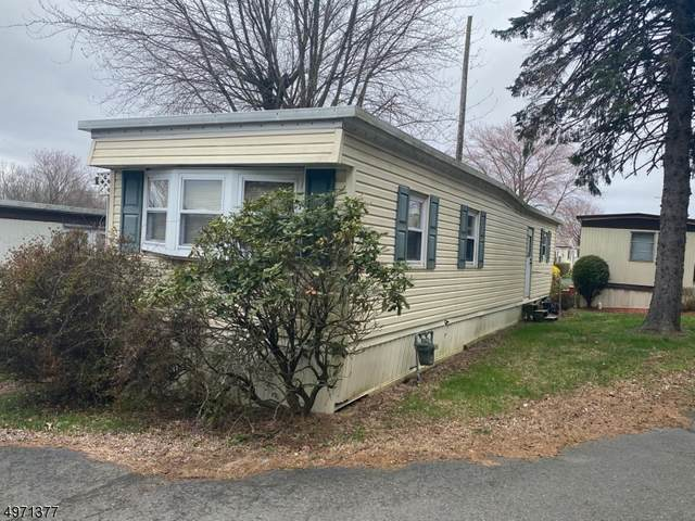 195 W Main St, Chester Boro, NJ 07930 (MLS #3627786) :: The Sikora Group