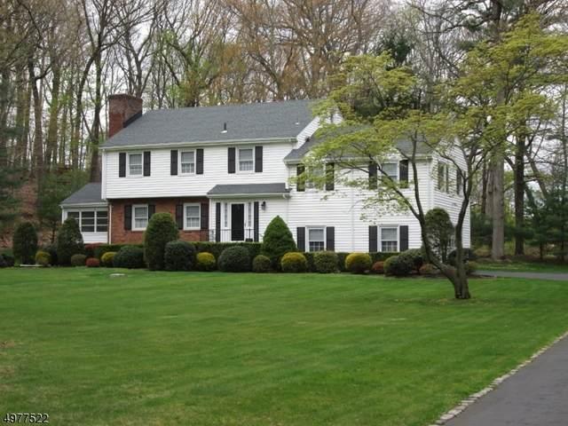 14 Arrowhead Rd, Morris Twp., NJ 07960 (MLS #3629356) :: Mary K. Sheeran Team