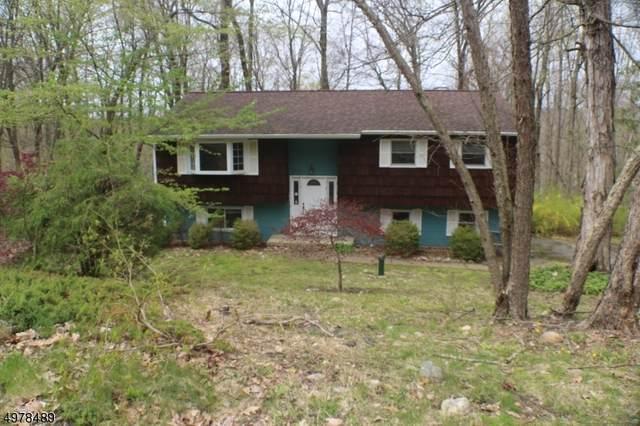 41 Brookwood Rd, Byram Twp., NJ 07874 (MLS #3630192) :: REMAX Platinum
