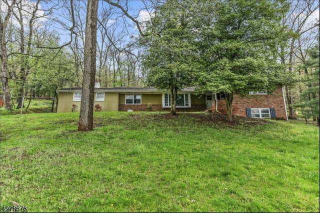 112 Branch Rd, Bridgewater Twp., NJ 08807 (MLS #3630389) :: Kiliszek Real Estate Experts