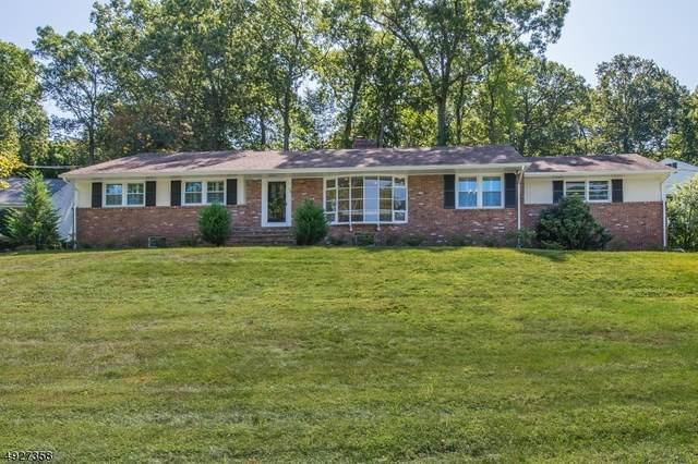 73 Stoneridge Road, New Providence Boro, NJ 07901 (MLS #3631429) :: Team Francesco/Christie's International Real Estate