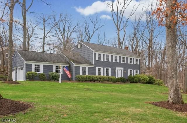 33 Timber Rock Trl, Bernardsville Boro, NJ 07924 (MLS #3631513) :: REMAX Platinum