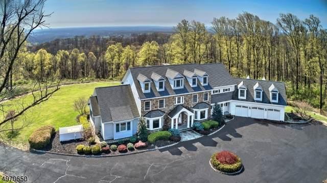124 Old Turnpike Rd, Tewksbury Twp., NJ 07830 (MLS #3632085) :: SR Real Estate Group