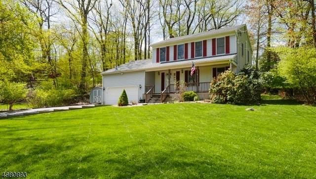 36 Sherwood Forest Dr, Byram Twp., NJ 07821 (#3632233) :: Daunno Realty Services, LLC