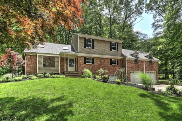 17 Sandt Ln, Washington Twp., NJ 07853 (MLS #3632561) :: SR Real Estate Group