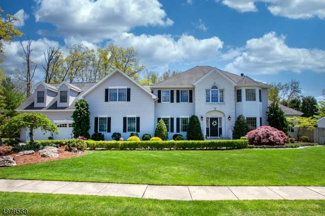 9 Behrens Drive, Hanover Twp., NJ 07981 (MLS #3632714) :: William Raveis Baer & McIntosh