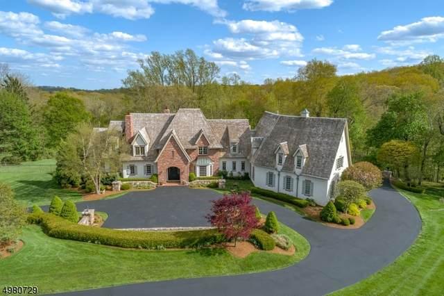 4 Crownview Ln, Bernardsville Boro, NJ 07924 (MLS #3632919) :: REMAX Platinum