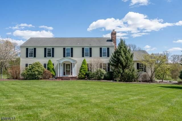 6 Farmhouse Rd, Alexandria Twp., NJ 08848 (MLS #3632956) :: Mary K. Sheeran Team