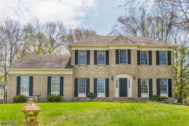 6 Sharon Ct, Mount Olive Twp., NJ 07836 (MLS #3632962) :: Mary K. Sheeran Team