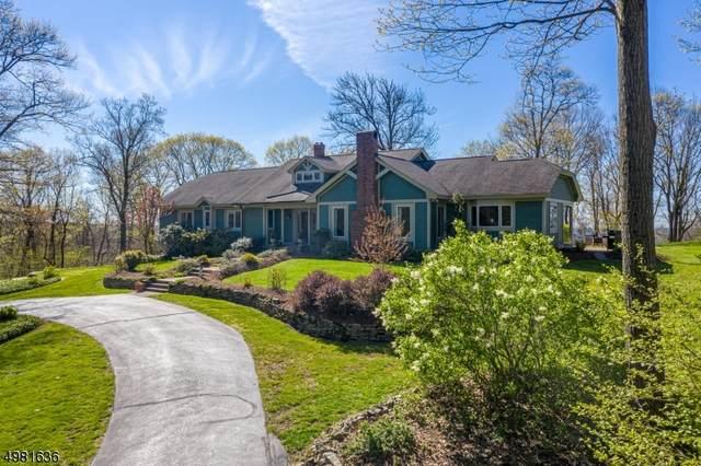 410 Goritz Rd, Alexandria Twp., NJ 08848 (MLS #3632992) :: Coldwell Banker Residential Brokerage