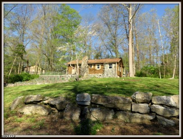 915 Kill Drive, Stillwater Twp., NJ 07860 (MLS #3633101) :: SR Real Estate Group