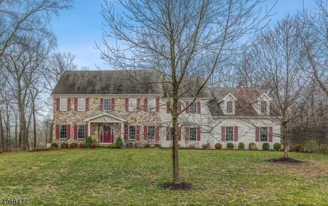 16 Rolins Mill Rd, Raritan Twp., NJ 08822 (MLS #3633396) :: RE/MAX Select