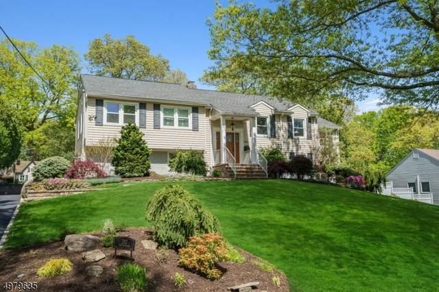 282 Ravenswood St, Mountainside Boro, NJ 07092 (MLS #3633589) :: The Dekanski Home Selling Team