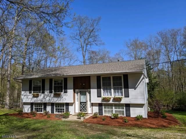 3 Van Sickle Rd, Sandyston Twp., NJ 07826 (MLS #3633624) :: SR Real Estate Group