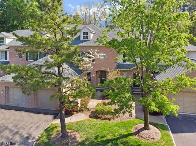 14 Chadwell Pl, Morris Twp., NJ 07960 (MLS #3634063) :: SR Real Estate Group