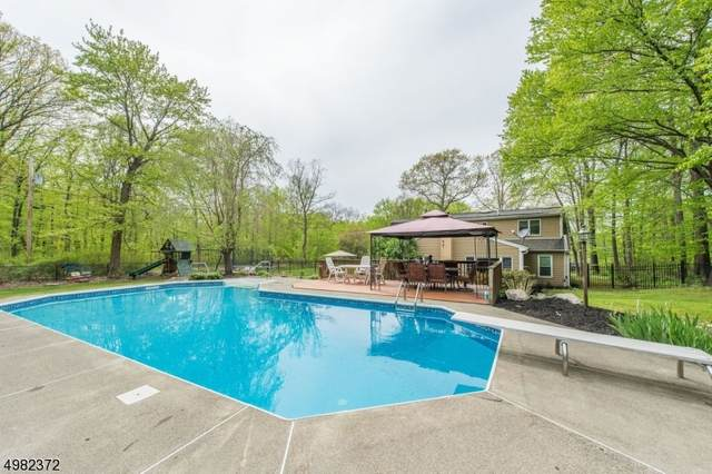 59 Possaghi Rd, Hampton Twp., NJ 07860 (MLS #3634357) :: SR Real Estate Group