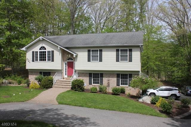 61 Lackawanna Dr, Byram Twp., NJ 07874 (#3634477) :: Daunno Realty Services, LLC