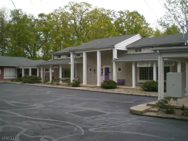 3118 Route 10, Denville Twp., NJ 07834 (MLS #3634788) :: Weichert Realtors