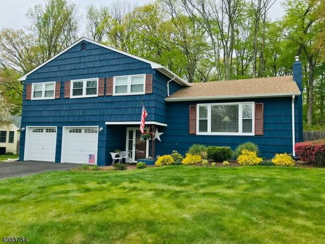 48 Toby Dr, Roxbury Twp., NJ 07876 (MLS #3634828) :: The Sue Adler Team