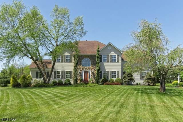 14 Ponderosa Trail, Sparta Twp., NJ 07871 (#3635018) :: Daunno Realty Services, LLC